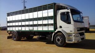 DAF LF55 250 Viehtransporter LKW
